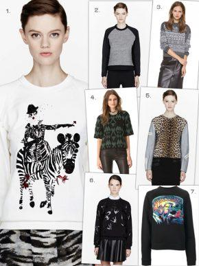 Hot Trend – Fashion Sweatshirts